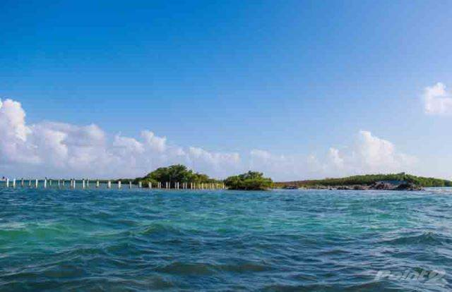 住居居住用、売買物件 建ての (2186) 75 ACRES OF PRIME LAND LOCTED ON AN ISLAND IN THE CARIBBEAN SEA., Cayes, Belize   , ベリーズ